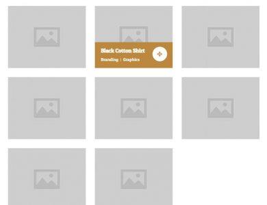 WebGatha Shortcode Portfolio Setting